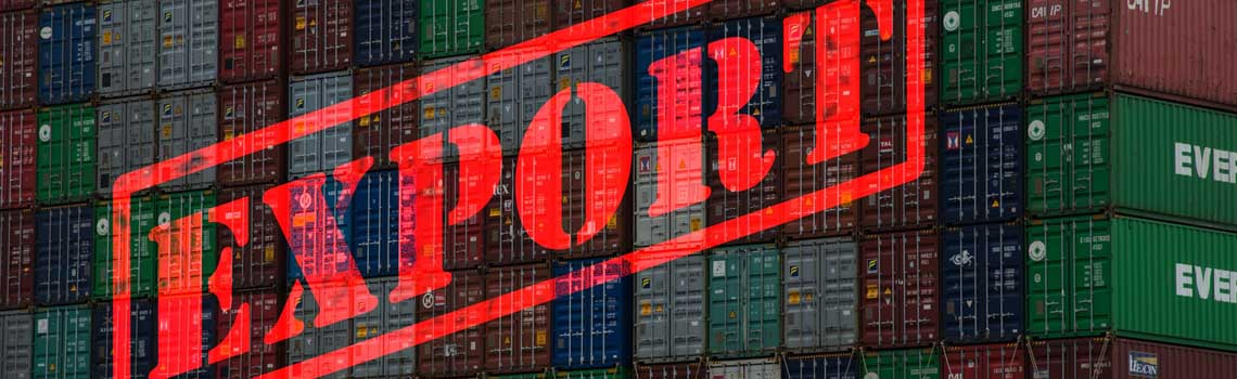 Import-Export-Transito-Eendagsverzekering